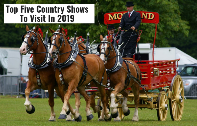 Top Five Country Shows To Visit In 2019 | Haynet
