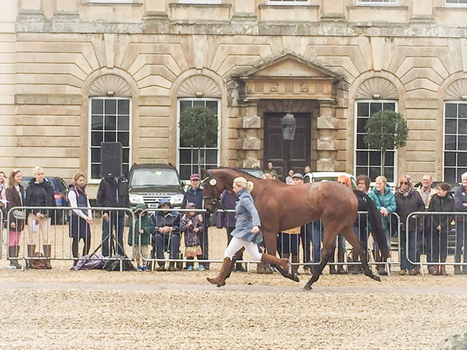 Trot Up in front of Badminton House